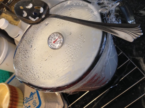 Milk and thermometer